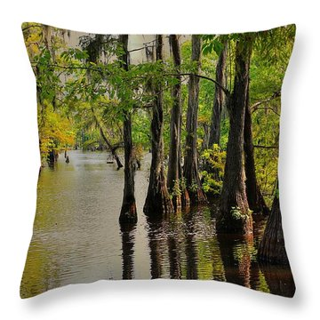 Louisiana Cypress Swamp Throw Pillow by Ester  Rogers