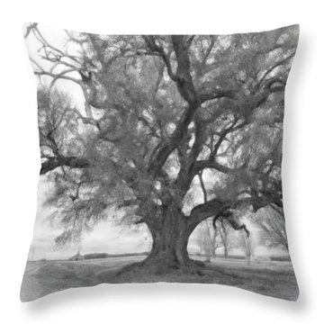 Louisiana Dreamin' Monochrome Throw Pillow by Steve Harrington