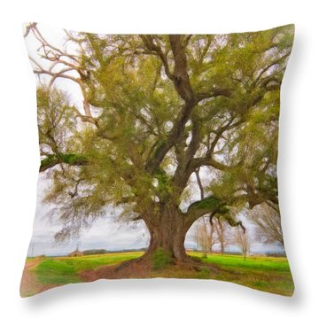 Louisiana Dreamin' Throw Pillow by Steve Harrington