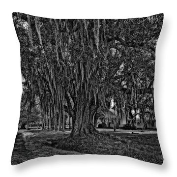 Louisiana Moon Rising Monochrome 2 Throw Pillow by Steve Harrington