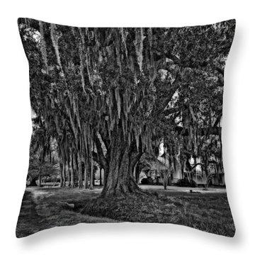 Louisiana Moon Rising Monochrome  Throw Pillow by Steve Harrington
