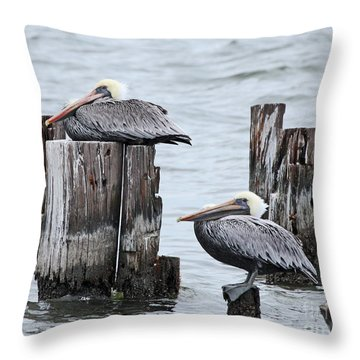 Louisiana Pelicans On Lake Ponchartrain Throw Pillow