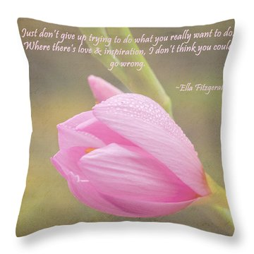 Love And Inspiration Throw Pillow