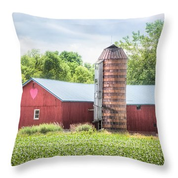 Throw Pillow featuring the photograph Love Barn by Gary Heller