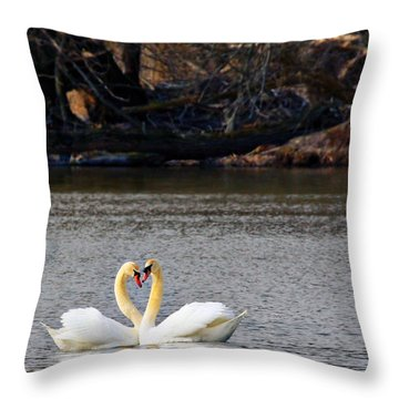 Love Birds Throw Pillow by Richard Engelbrecht