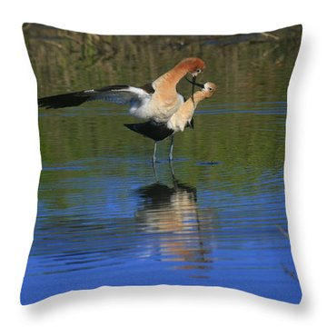Throw Pillow featuring the photograph  Courtship Cross by John F Tsumas