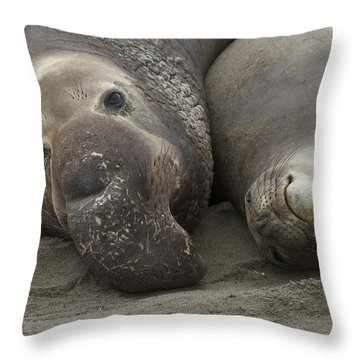 Love  Throw Pillow by Duncan Selby