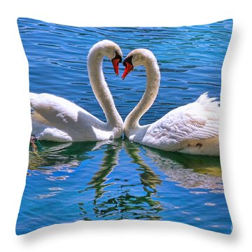 Love For Lauren On Lake Eola By Diana Sainz Throw Pillow by Diana Sainz