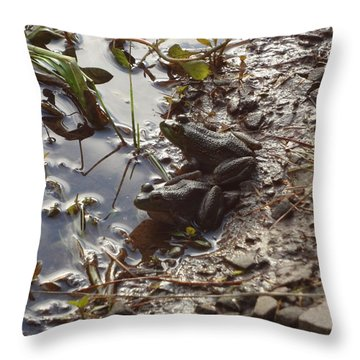 Throw Pillow featuring the photograph Love Frogs by Michael Porchik