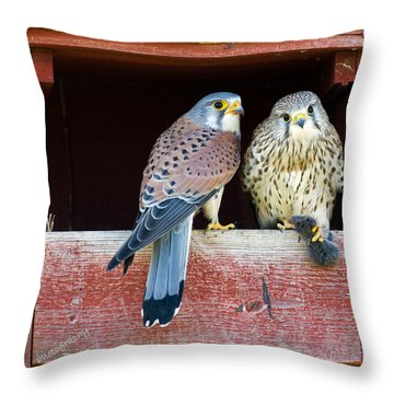Love Gift Throw Pillow by Torbjorn Swenelius