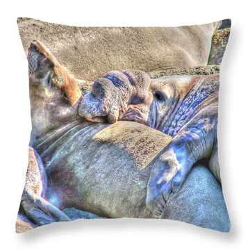 Love Hug - San Simeon California Throw Pillow