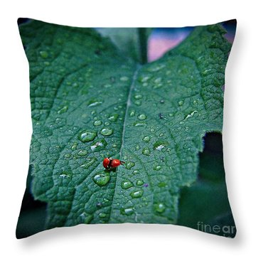 Throw Pillow featuring the photograph Love In The Rain by John  Kolenberg