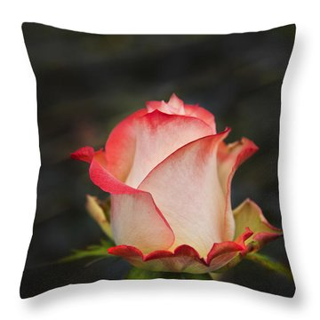Love Is A Rose II Throw Pillow by Al Bourassa