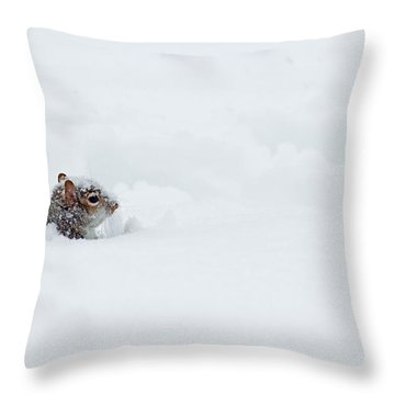 Love Is Snowblind Throw Pillow