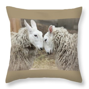 Love Me Sweet Throw Pillow