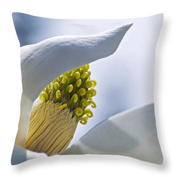 Love Of Nature Throw Pillow by Gwyn Newcombe