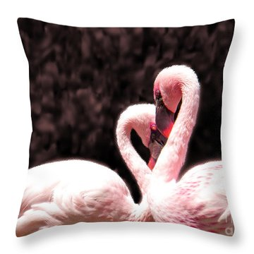 Love Of The Flamingos Throw Pillow