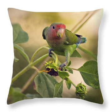 Lovebird On  Sunflower Branch  Throw Pillow