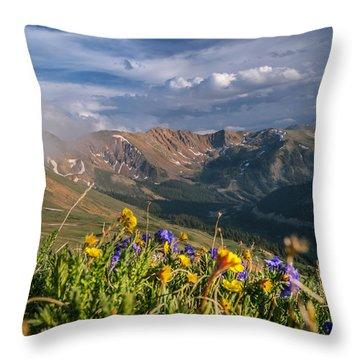 Loveland Pass Summer Throw Pillow