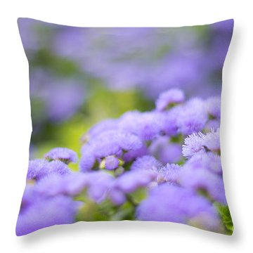 Lovely Blue Mink With Lavender Tones In Soft Focus Throw Pillow