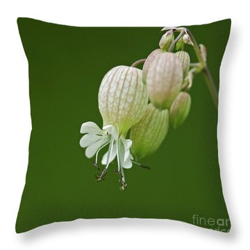 Lovely Bubbles... Throw Pillow by Nina Stavlund