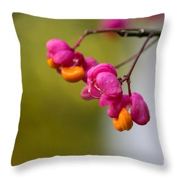 Lovely Colors - European Spindle Flower Seeds Throw Pillow