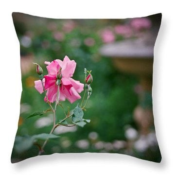 Lovely In Pink Throw Pillow by Linda Unger