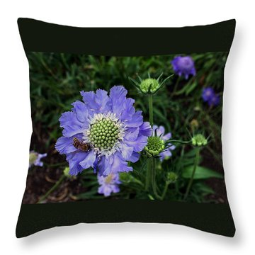 Throw Pillow featuring the photograph Lovely In Purple by Ellen Tully