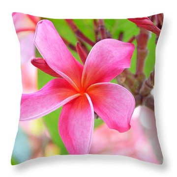 Throw Pillow featuring the photograph Lovely Plumeria by David Lawson