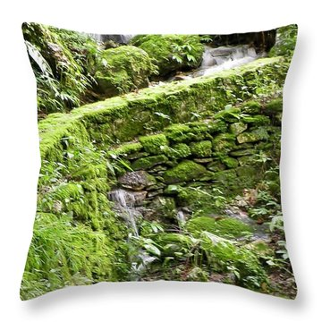 Lovely Waterfall Throw Pillow