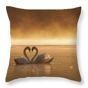 Swan Throw Pillows
