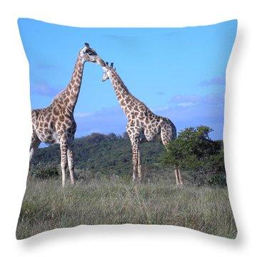 Lovers On Safari Throw Pillow
