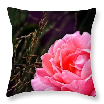Loves Enchantment Throw Pillow