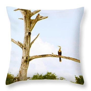 Low Angle View Of Cormorants Throw Pillow