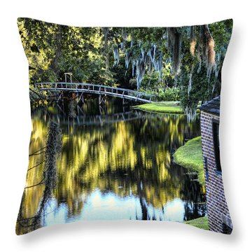 Throw Pillow featuring the photograph Low Country Impressions by Jim Hill