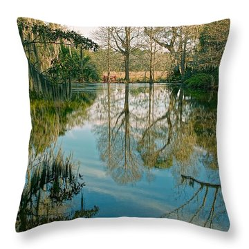 Low Country Swamp Throw Pillow