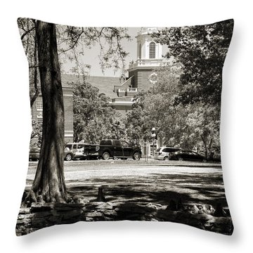 Low Library Throw Pillow