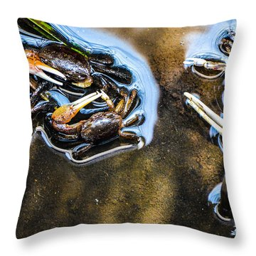 Low Tide Breakfast  Throw Pillow