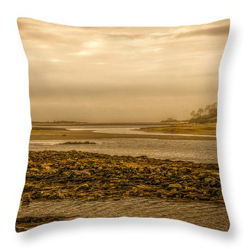 Low Tide Cape Porpoise Maine Throw Pillow by Bob Orsillo