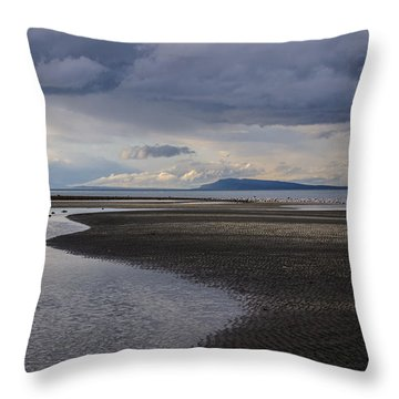 Tidal Design Throw Pillow