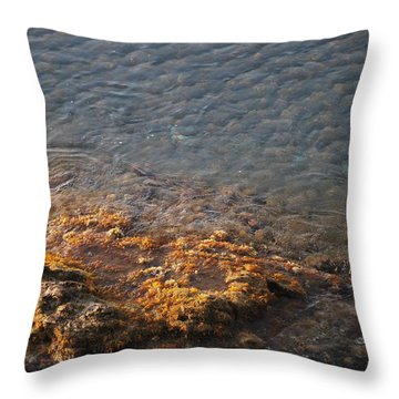 Throw Pillow featuring the photograph Low Tide by George Katechis