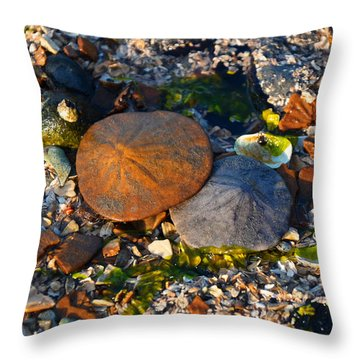 Low Tide Lovers Throw Pillow