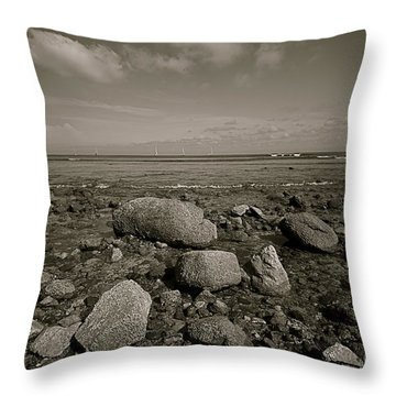 Low Tide Throw Pillow by Nicola Fiscarelli