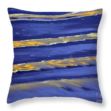 Throw Pillow featuring the photograph Low Tide Reflections by Everette McMahan jr
