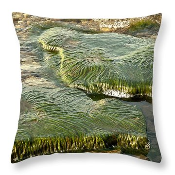 Low Water Algae Throw Pillow by Lena Wilhite