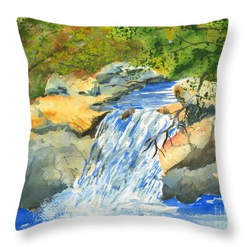Lower Burch Creek Throw Pillow