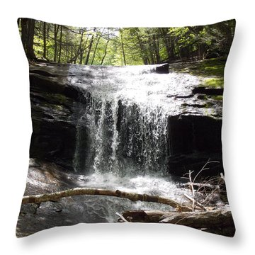 Lower Chapel Brook Falls Throw Pillow