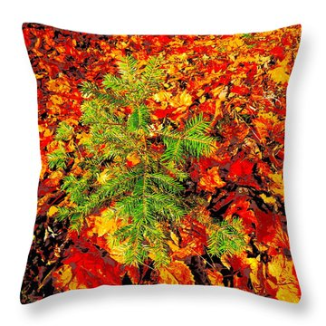 Lower Childs Brook 4 Throw Pillow