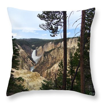 Throw Pillow featuring the photograph Lower Falls by Charles Robinson