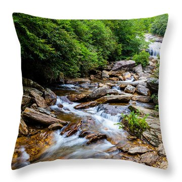 Lower Graveyard Falls Throw Pillow by David Cote
